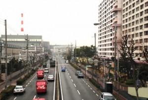 20100115_photo