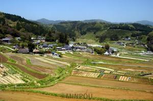 能勢町長谷の水田と畑