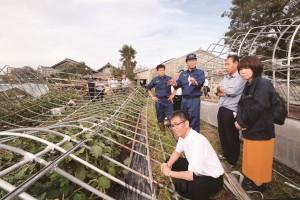 倒壊した農業ハウスには収穫できなくなった水ナスが残されていました。農家の泉さんに被害状況を聞く山下、宮本、たつみ、北村の各氏ら=7日、泉佐野市内
